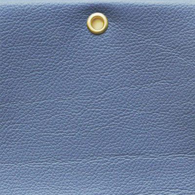 TANGO - DUTCH BLUE